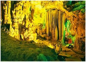 Phong_Nha_Ke_Bang_National_Park