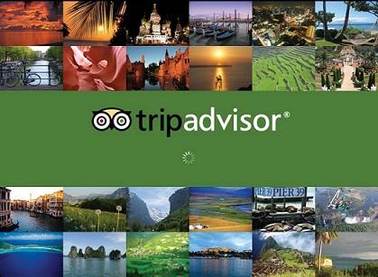Calypso Cruiser recommended on TripAdvisor