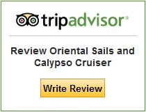 write_review_tripadvisor