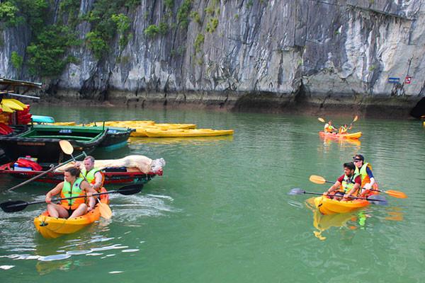 kayaking calypso cruiser