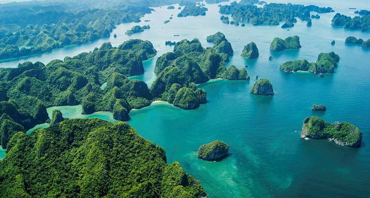 Ha Long Bay a once-in-a-lifetime destination: US publication. Photo: internet