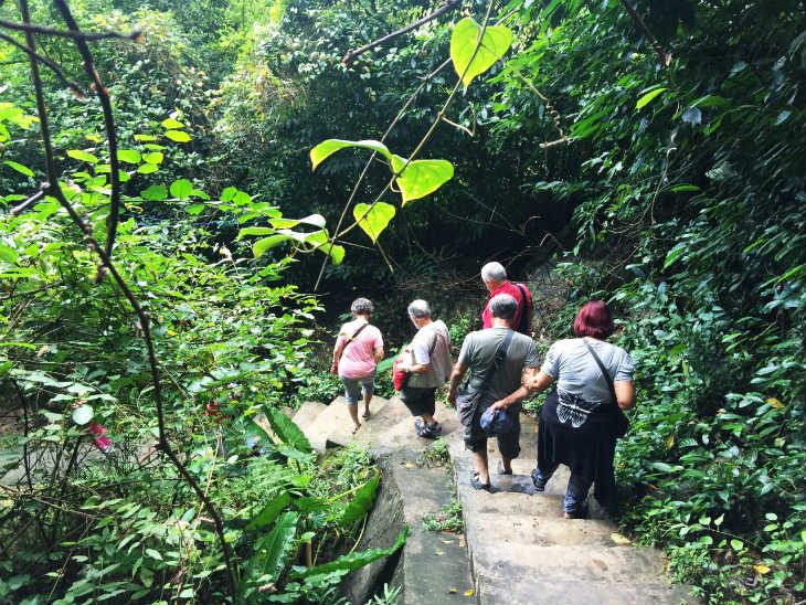 Explore Cat Ba National Park